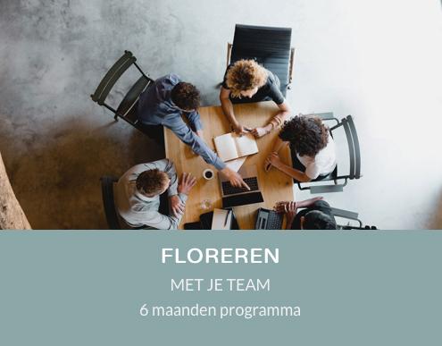 TMT florenren